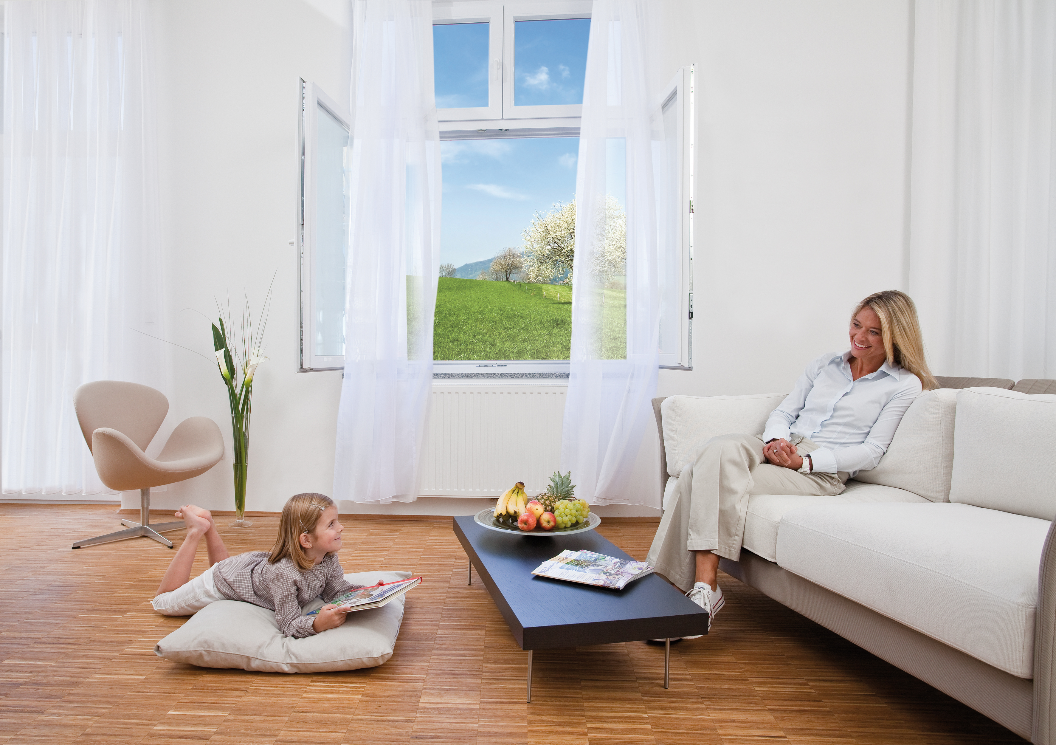 insektenschutz f r fenster. Black Bedroom Furniture Sets. Home Design Ideas